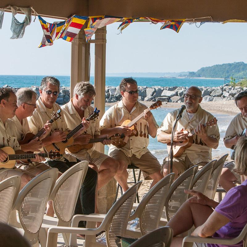 The Dancing Bohemians Ukulele Band